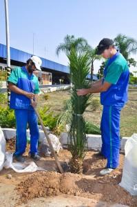 Prefeitura de Rio Claro executa paisagismo na Estação Rodoviária