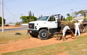 Prefeitura de Rio Claro implanta paisagismo na Rotatória da Avenida 50A