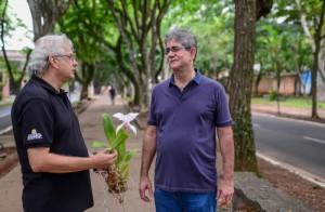 Orquídeas deverão enfeitar praça em frente a Igreja Bom Jesus