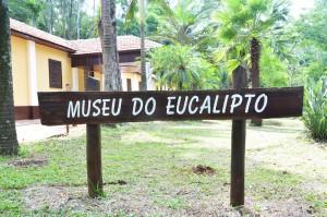 Após reforma, Museu do Eucalipto reabre para o público neste sábado