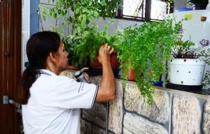 Fundação de Saúde encerra o ano dengue com resultado satisfatório