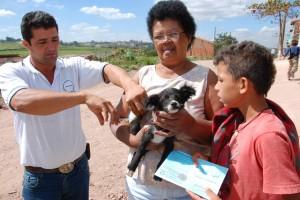 Cães e gatos de Rio Claro são vacinados contra raiva