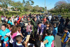 Paisagismo na Avenida Castelo Branco tem palmeiras com nome de crianças