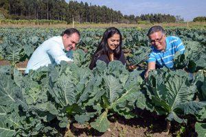 80 caixas de verduras da Horta Municipal são distribuídas a famílias carentes