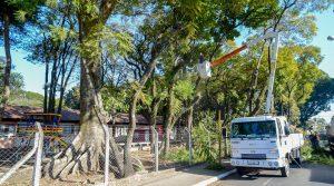 Prefeitura poda árvores na Diva Marques para reativar playground