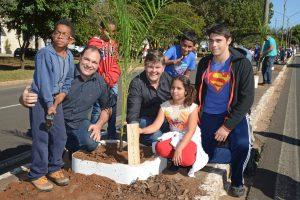 Prefeitura repõe palmeiras destruídas na Castelo Branco