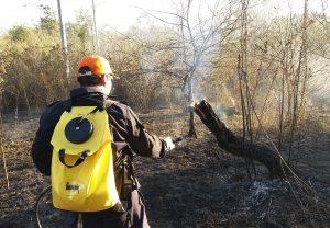 Defesa Civil controla incêndio em área de difícil acesso na Floresta