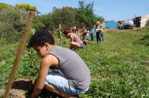 Crianças plantam 80 mudas de árvores em nova visita à nascente modelo do Daae