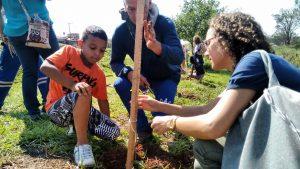 RC lança projeto de arborização de praças e escolas com árvores frutíferas