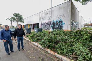 Prefeitura faz limpeza e poda de árvores no CEU Mãe Preta