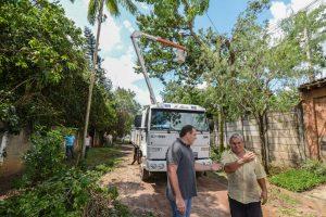 Forte chuva e ventos fortes ocasionam quedas de árvores na região de Ajapi