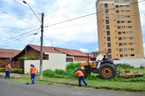 Prefeitura dá 20 dias para donos limparem terrenos baldios