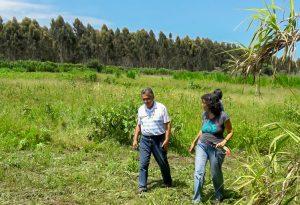 Rio Claro é referência paulista  em agroecologia e agricultura orgânica