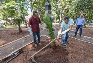 Prefeitura resgata visual do canteiro suspenso no Jardim Público