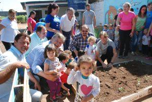 30 caixas de verduras e legumes são colhidas na Horta Solidária