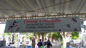 Cemitérios terão orientações  contra a dengue no domingo