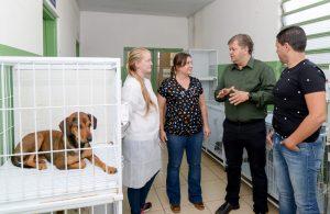Castrações de cães e gatos crescem  mais de 220% em um ano em Rio Claro
