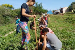 Rio Claro realiza encontro ambiental  com participação de 650 crianças