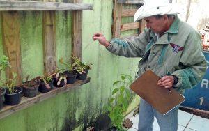 Situação de alerta: levantamento aponta  aumento de criadouros da dengue em Rio Claro