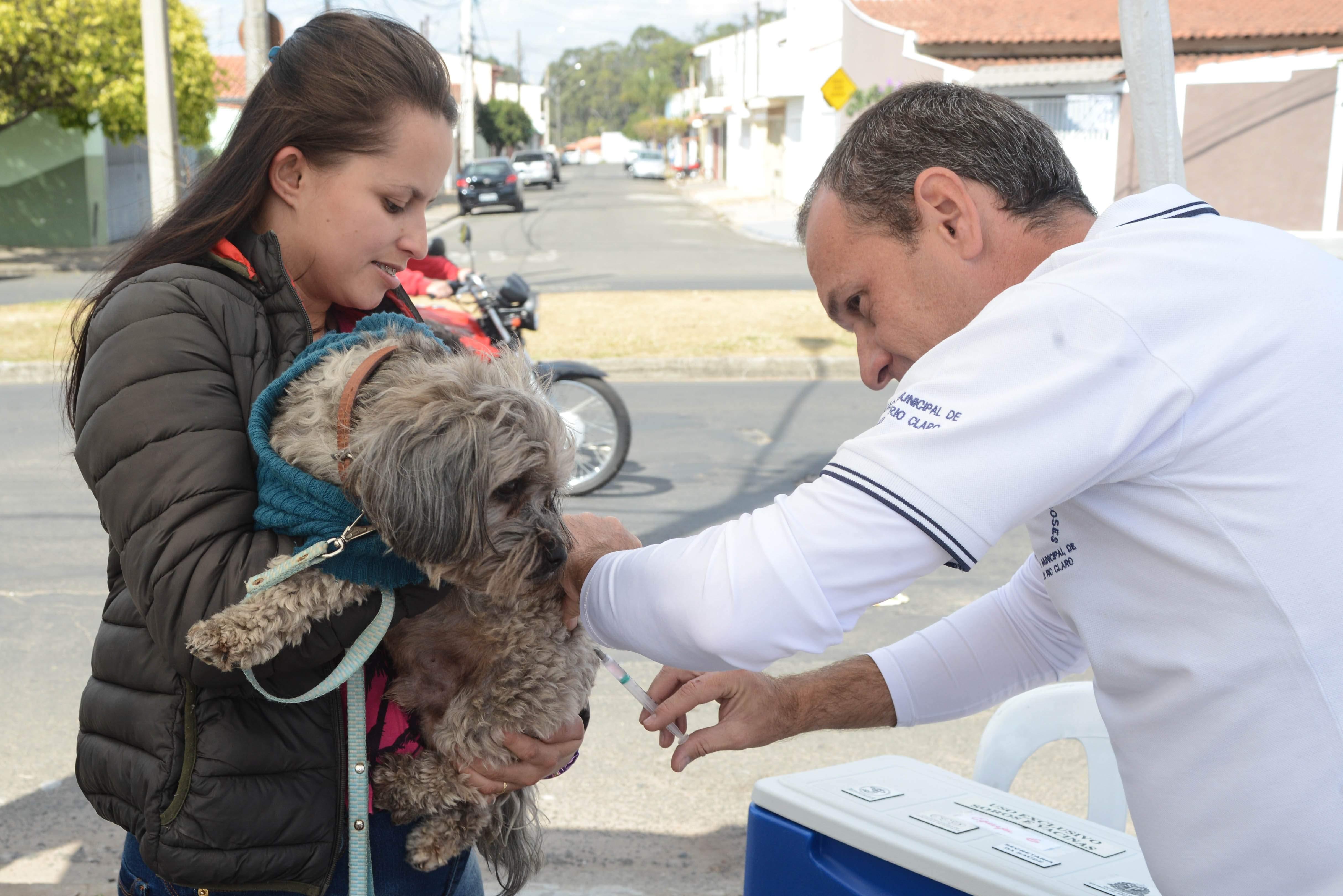 Vacinação antirrábica terá  12 postos neste final de semana