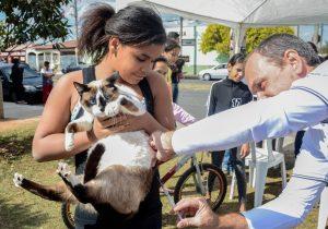 Vacinação antirrábica em área urbana começa domingo em Rio Claro