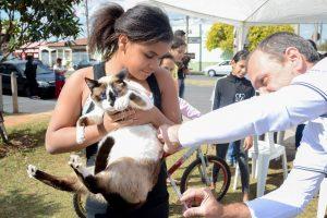 Mais de 2 mil animais foram vacinados no final de semana