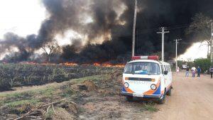 Chuvas ainda não afastam risco incêndios em Rio Claro