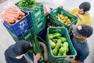 Escolas recebem oito toneladas por semana  de alimentos da agricultura familiar