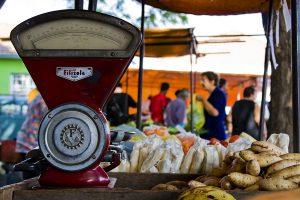 Quintetos de Quinta abre  exposição de concurso fotográfico