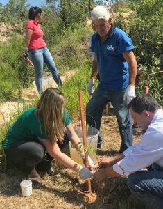 Daae e Whirlpool fazem plantio  de 100 mudas no Mãe Preta